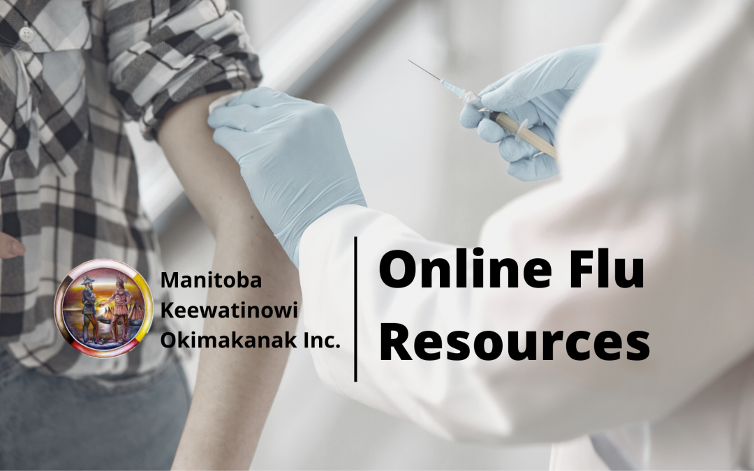 Online flu resources