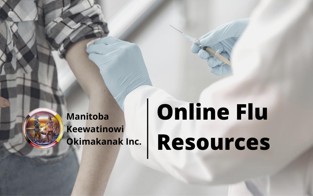Online flu resources
